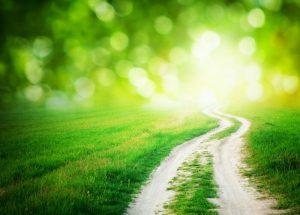 הדרך לשפע ולהצלחה